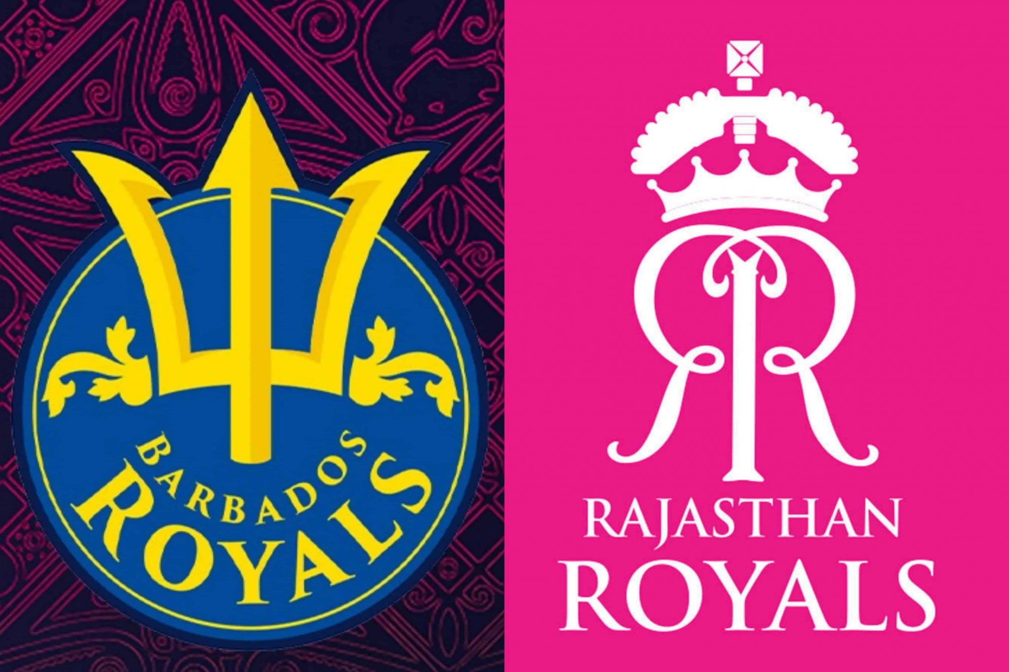Rajasthan Royals Become 3rd IPL Franchise After Punjab Kings To Own Caribbean Premier League Side