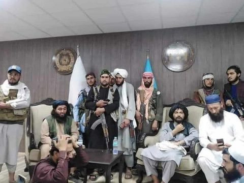 Taliban Loves Cricket, They Supported Us Since The Beginning: ACB CEO Hamid Shinwari